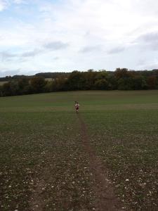 A long long downhill though a lovely big field....magic.